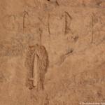 Egyptologically Speaking:  Dr Maria Nilsson on Gebel el Silsila