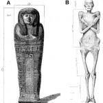 Figure 6. Dr Granville's Mummy, from Thebes, 600BC