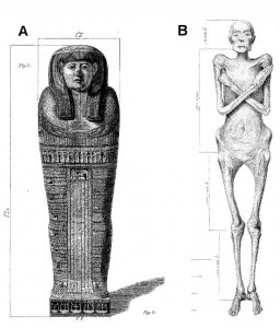 Dr Granville's Mummy, from Thebes, 600BC