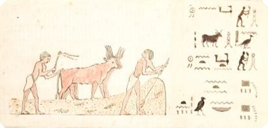 One of Marianne's sketches of El Kab Figure 7. One of Marianne's sketches of the tombs of El Kab