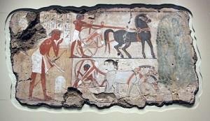 Scene with Nebamun's chariot