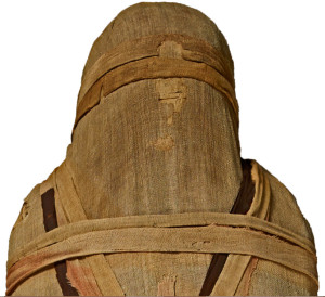 The 26th Dynasty mummy of man with no name.